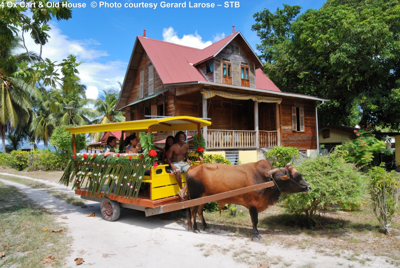 Ox Cart & Old House