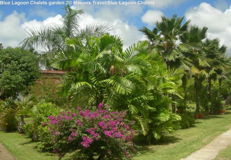 Blue Lagoon Chalets garden