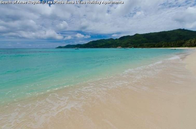 Beach of Anse Royale © Les Pieds dans L'Eau Holiday Apartments (Mahe)