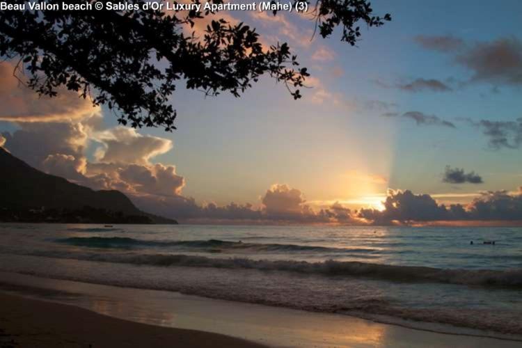 Beau_Vallon_ Beach Sables d'Or Luxury Apartment (Mahe)