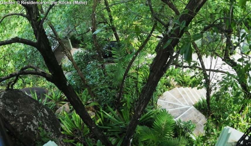 Garden © Residence on the Rocks (Mahe)