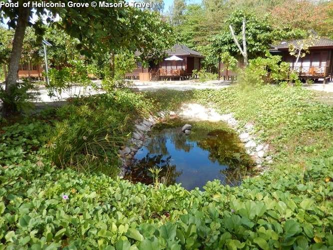 Pond of Heliconia Grove (Praslin)