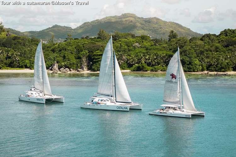 Tour with a catamaran