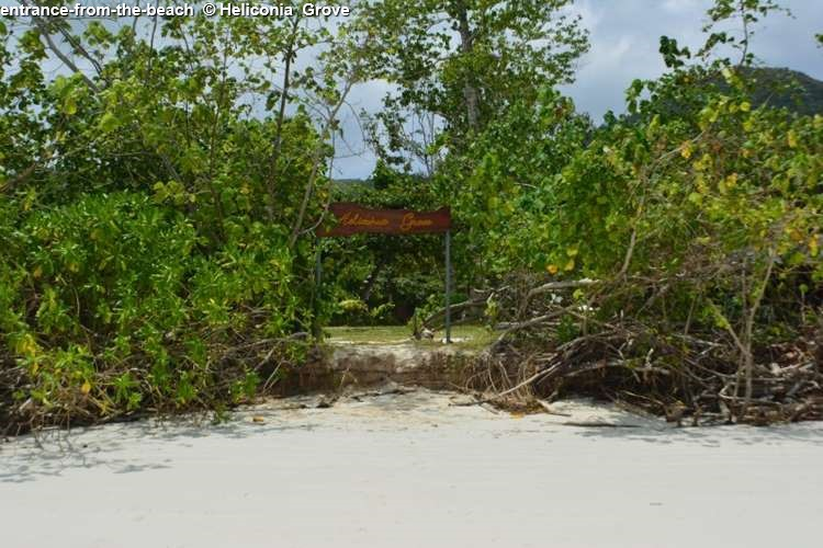 Entrance from the beach Heliconia Grove (Praslin)